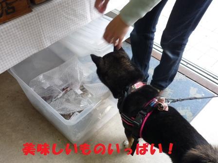 blog10608.jpg
