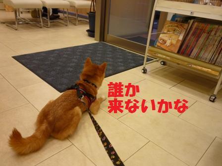 blog10638.jpg