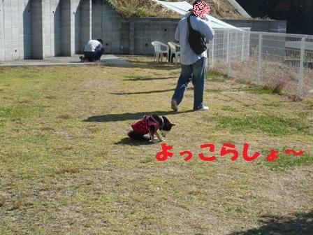 blog9936.jpg