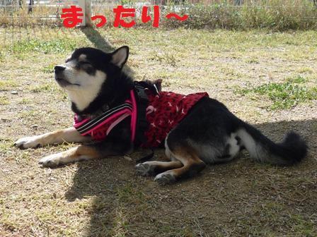 blog9941.jpg