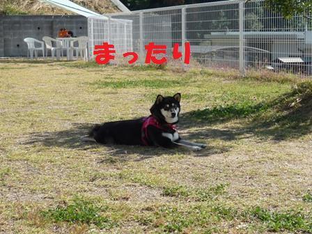 blog9942.jpg