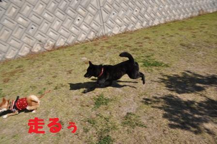 blog9956.jpg
