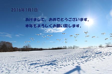IMG_5116b_20160106212749af9.jpg