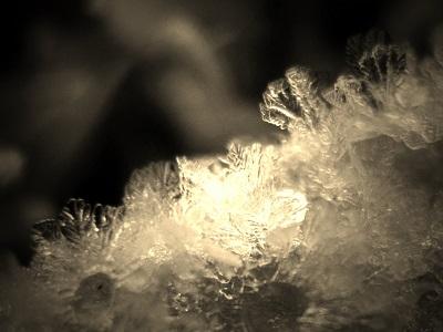 氷のアート1