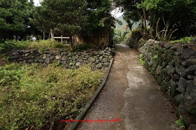 10gatu-brog.jpg