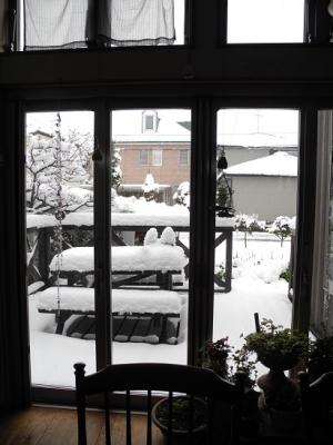 20160112初積雪①