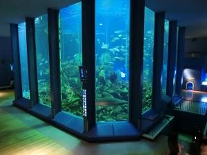 海洋科学博物館補足画像3