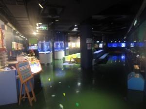 碧南水族館修正4