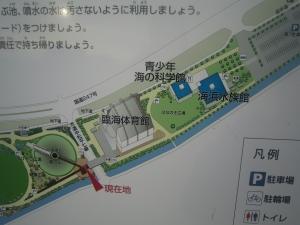碧南市臨海公園3