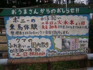 岡崎東公園動物園 乗馬体験