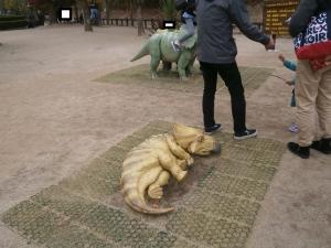 岡崎東公園動物園トリケラミニ