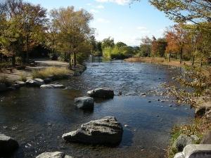 木曽川水園3