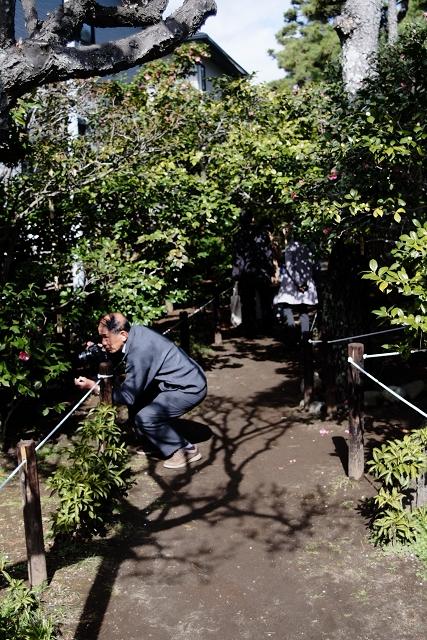 FD285035SSCと氷室椿庭園