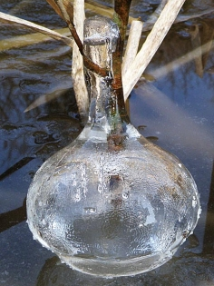 氷の一輪挿3