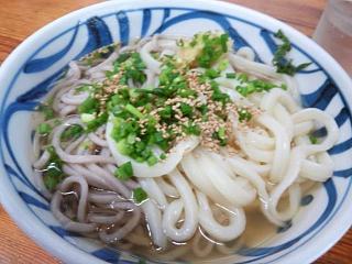 20150713さか枝(その1)