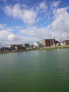 20150822野田池散歩(その2)