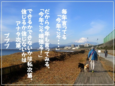 DSC_3740.jpg