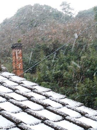 雪の朝1(2016-01-19)
