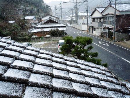 雪の朝5(2016-01-19)