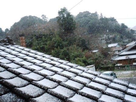 雪の朝4(2016-01-19)
