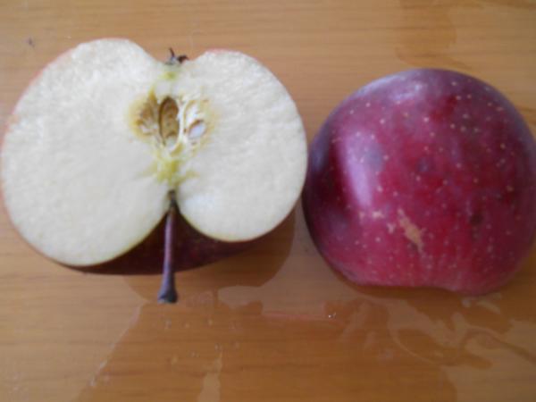 りんごわったところ