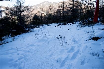2016-01-03 厳冬期黒斑山06 (1 - 1DSC_0006)_R