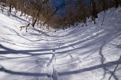 20160126 厳冬期 赤城山29 (1 - 1DSC_0067)_R