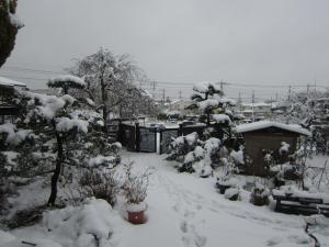 雪景色16.1.17