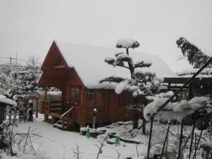 雪景色16.1.17(2)