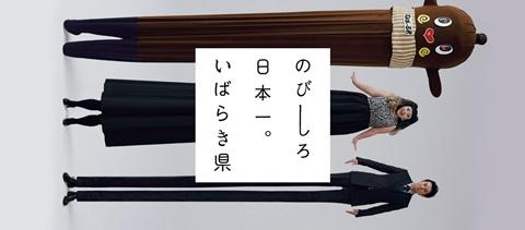 main_nobishiro.jpg