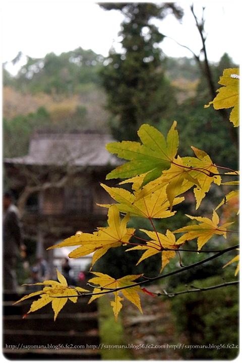 sayomaru15-704.jpg