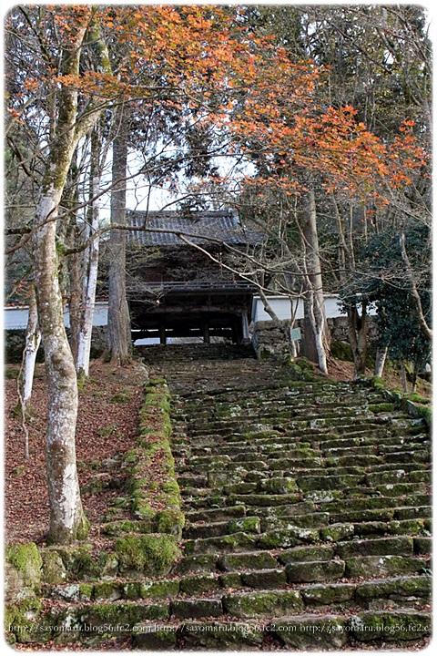 sayomaru15-728.jpg