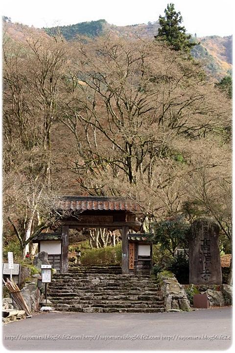 sayomaru15-729.jpg