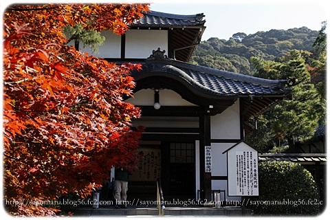 sayomaru15-871.jpg