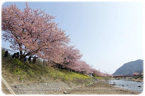 sayomaru16-245.jpg
