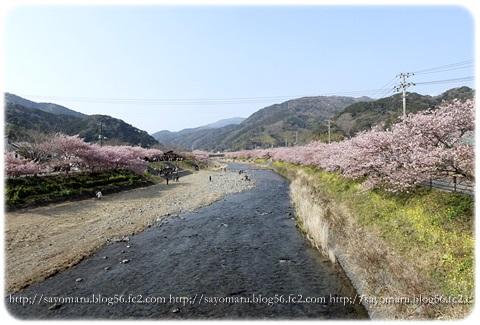 sayomaru16-246.jpg