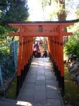 上野公園の花園神社