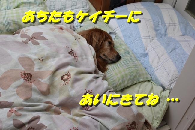 睡眠地図矢沢 014