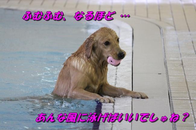 Pool with JouJou R Keyna 003