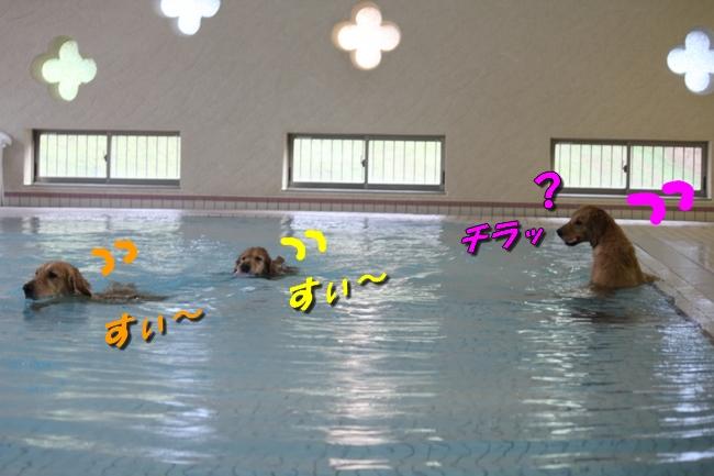 Pool with JouJou R Keyna 004