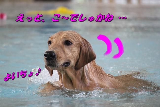 Pool with JouJou R Keyna 029