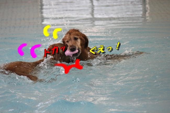 プールと体調不良 050