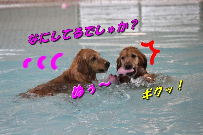 プールと体調不良 051