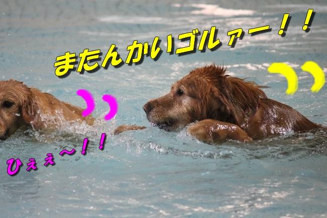 プールと体調不良 055