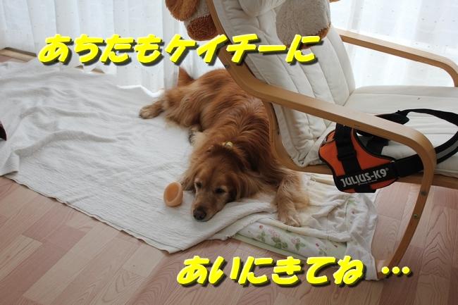 久遠ボウイクリスマスディナー 009