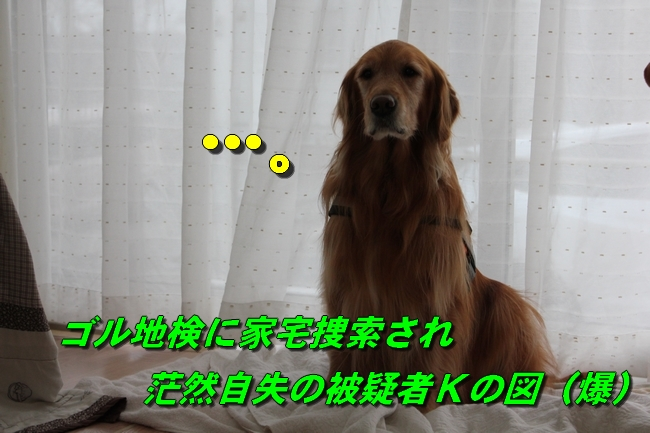 久遠ボウイクリスマスディナー 041