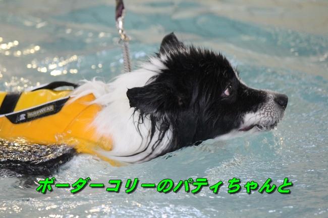 泳ぎ納め 135