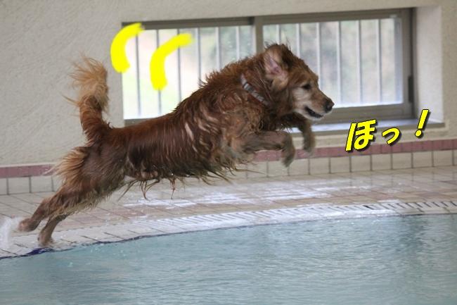 泳ぎ納め 147