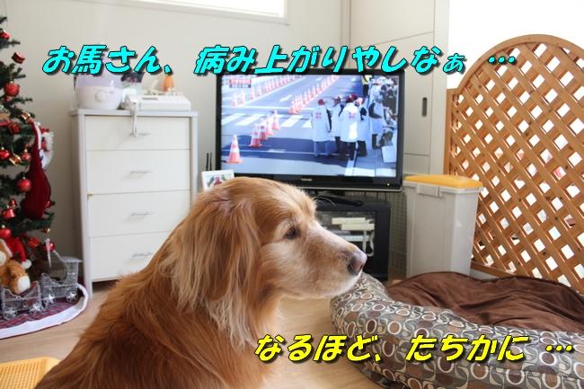 箱根駅伝 017