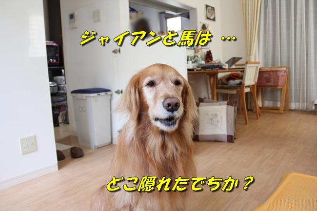 箱根駅伝 021